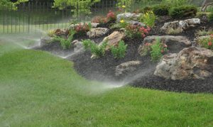 Irrigation System with Planter Bed and Large Stones