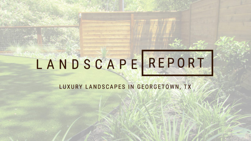Header image of backyard landscape design