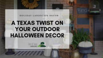 Blog image for Texas style Halloween decor